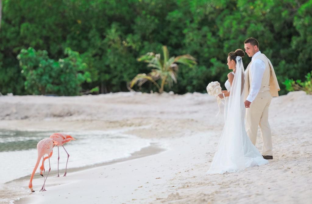sposarsi ad aruba